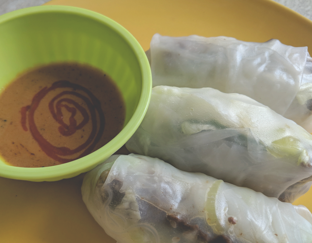 Vietnamese Salad Rolls with Peanut Sauce